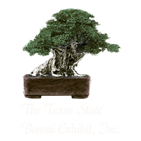 The Texas State Bonsai Exhibit, Inc.